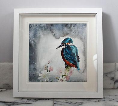 original kingfisher 2 LR.jpg