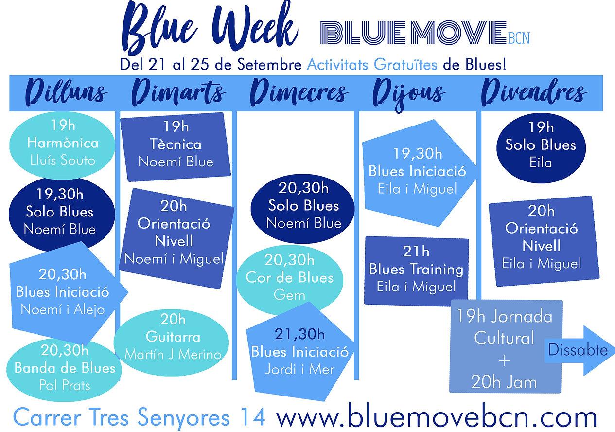blue week 20.jpg