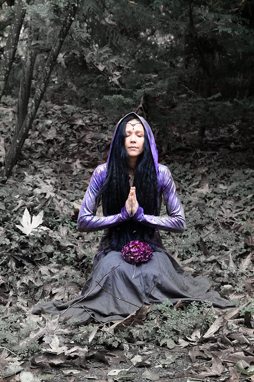 Intuitive Life Coach energy Healer Psychic Reading Medium Empath Spiritual Counselor