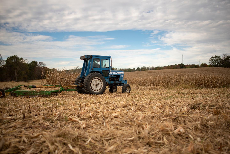 farm3_2.jpg