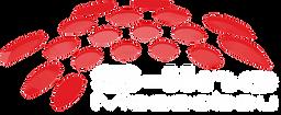 sline logo weiße schrift small.tif