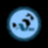 Logopit_1539113758074.png