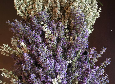 How To Enjoy Your Lavender Bundles