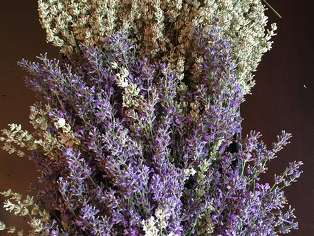 How To Enjoy Your Lavender Bundles