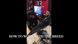 The Breed Entertainment Interviews with Incline Magazine on IG Live