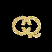 OQ ALT Icon Logo (1).png