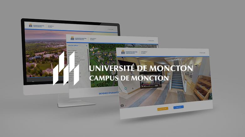 Université de Moncton - The Virtual Platform