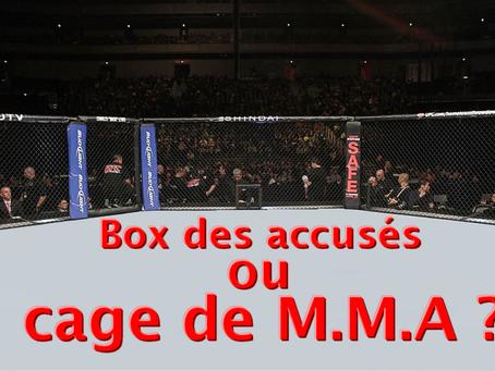 PREJ de LILLE : Box des accusés ou cage de M.M.A ?