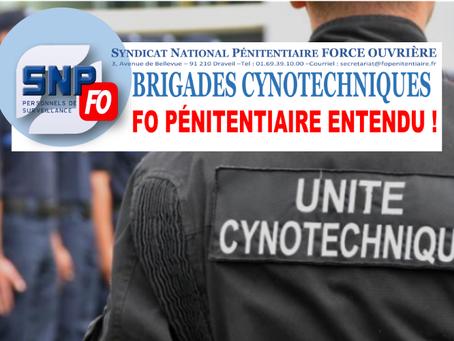 BRIGADES CYNOTECHNIQUES : FO PÉNITENTIAIRE ENTENDU !