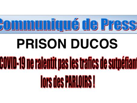Prison de Ducos : Le Covid-19 ne ralentit pas les trafics de stupéfiants lors des parloirs !