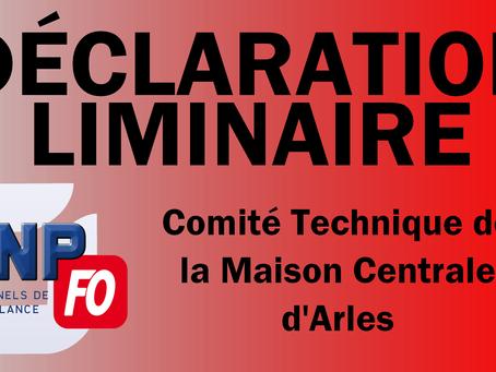 Arles : Déclaration Liminaire au Comité Technique du 08/12/17