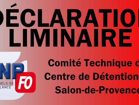 Déclaration Liminaire du Comité Technique du centre de détention de Salon-de-Provence