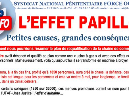 L'EFFET PAPILLON : Petites causes, grandes conséquences !