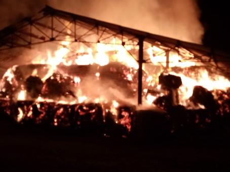 Prison de Casabianda : Incendie au Centre de Détention