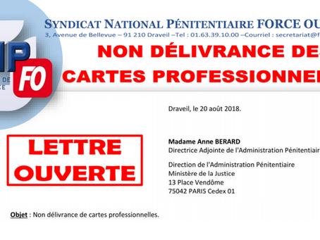 Lettre Ouverte à Madame ANNE BERARD, Directrice Adjointe de l'AP : Non délivrance des cartes pro