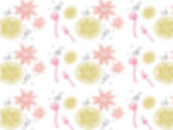 charlotte-website-millstreet-page1.jpg