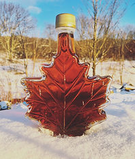 Glass bottle of maple syrup in snow