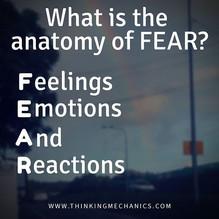 FEaR - what is it?