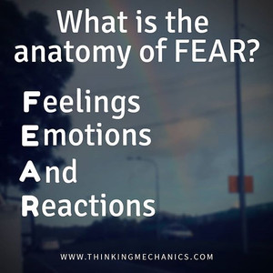 FEaR - what is it?