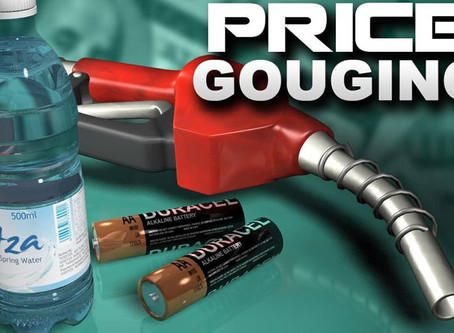 REPORT Price Gouging