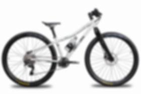 Das leichteste E-Bike der Welt