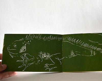 libro-ny15.jpg