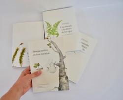 Libro | Bosque nativo en tres mirada