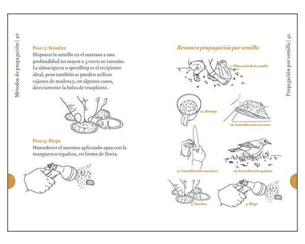 Libro   Flora nativa, propagación de esp
