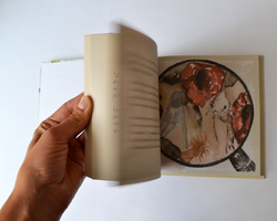 Libro | Los amigos del Santuario