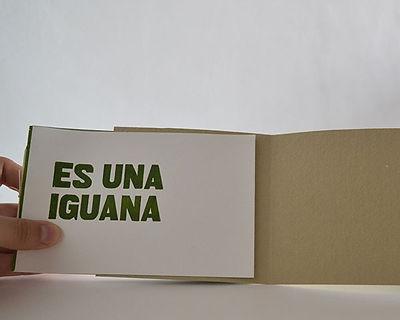 libro-ny16.jpg