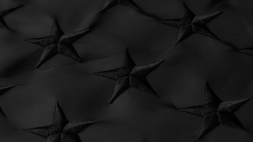 Black-American-Flag-Detail-1_edited.jpg