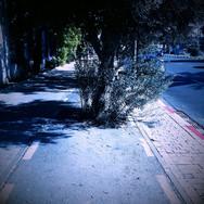 רחוב בן צבי - תל אביב