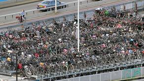 עיריית אמסטרדם מפנה 11,000 מקומות חניה לרכב, לטובת עצים, מדרכות ושבילי אופניים
