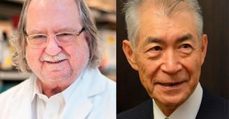 Prêmio Nobel de Medicina vai para terapia contra o câncer