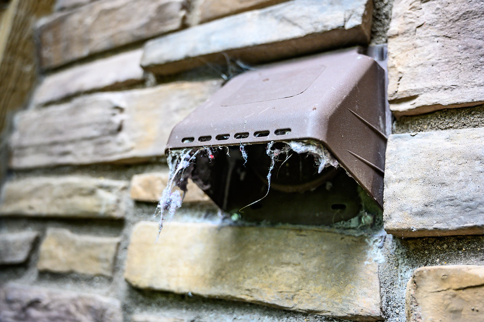 lint hanging from dryer outdoor vent.jpg