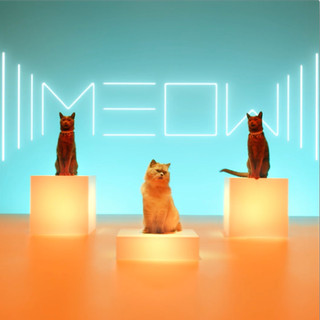 "Meow (ReMix) - ""Luna"""