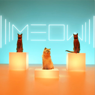 "Advertising: Meow (ReMix) - ""Luna"""