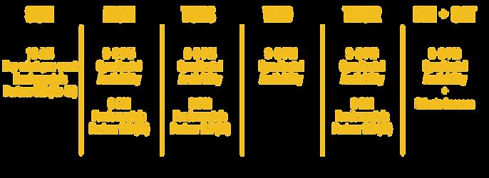Yellow Schedule for new website; horizon