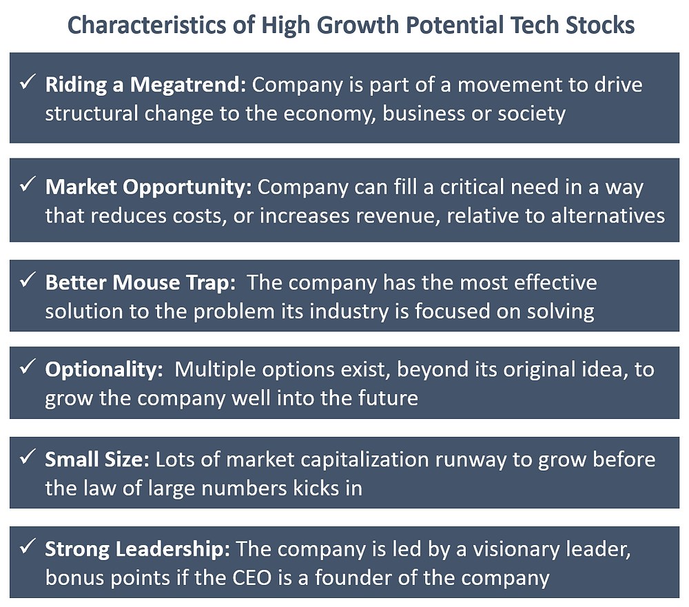 Characteristics of high growth potential tech stocks