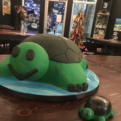 Company Turtle