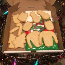 Christmas Sugar Cookie Decorating Kit