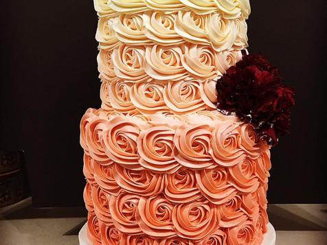 Carnation Highlights