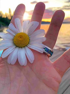 Hand holding a flower with a cremation ring and a beautiful sunset.