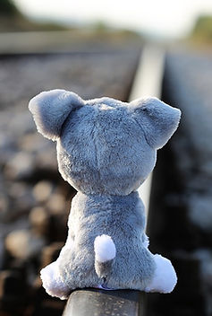 Teddy-Bear-Waiting-Lost-Friend-Stop-Chil