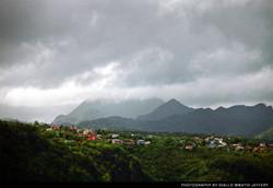 Lucian Hillside Homes