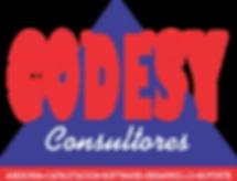 Logo Codesy Consultores