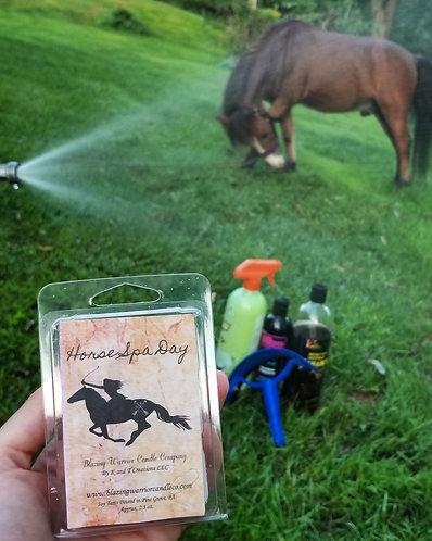 Horse Spa Day Wax Melt