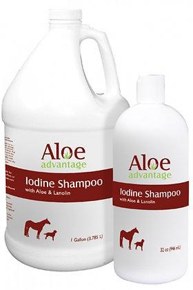 Aloe Iodine Shampoo