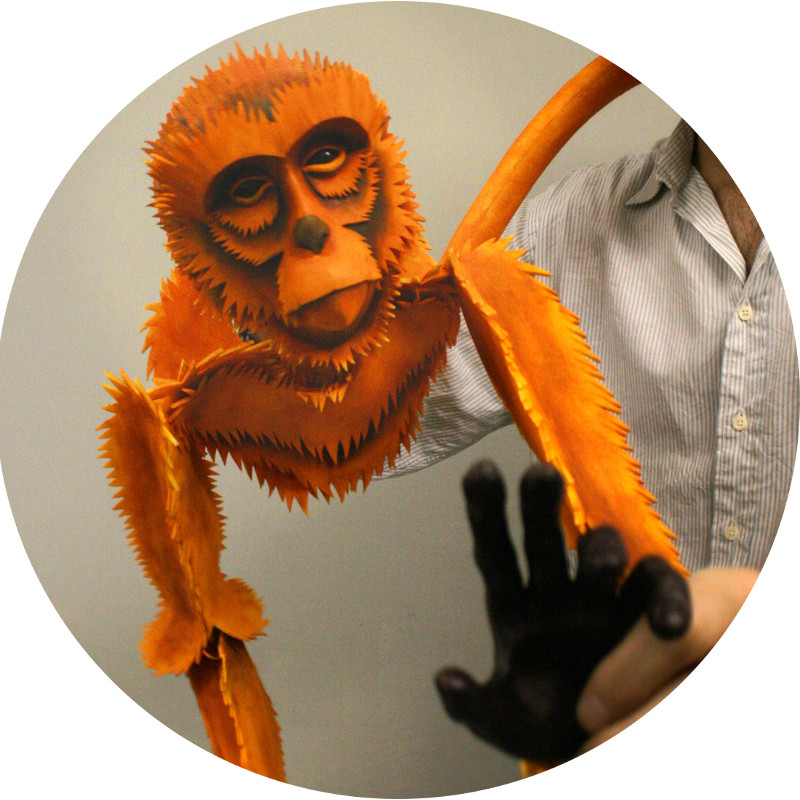 Puppet of the Month - Golden Monkey