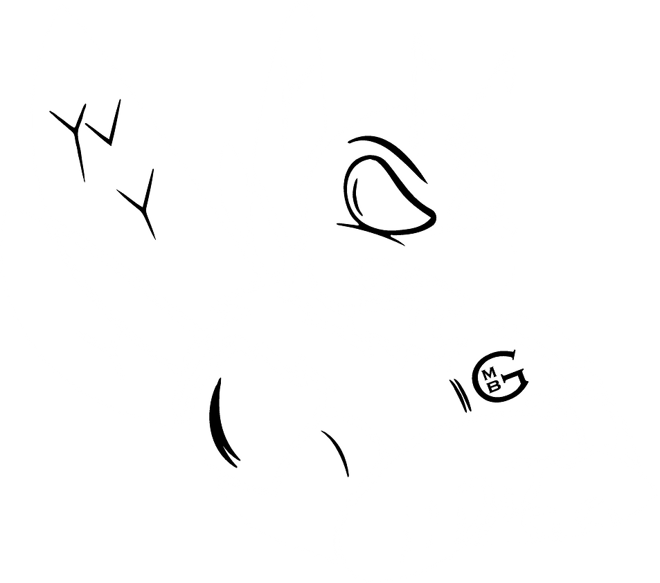 logo mighty bee blanc 2.png